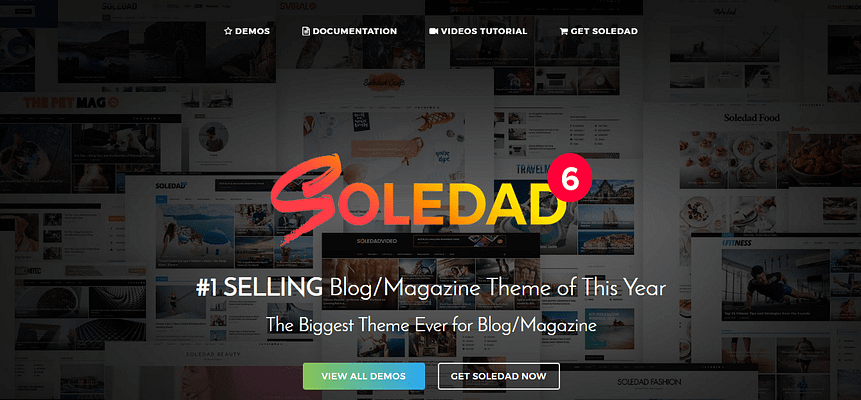 soledad theme, best free and paid WP theme