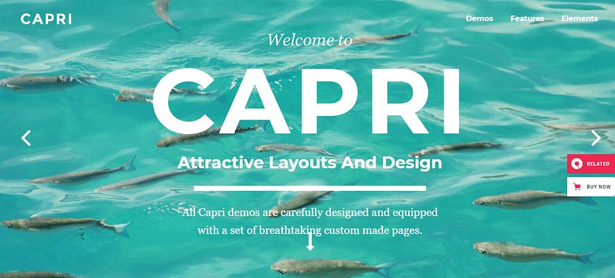 Portfolio WordPress Themes, capri theme,